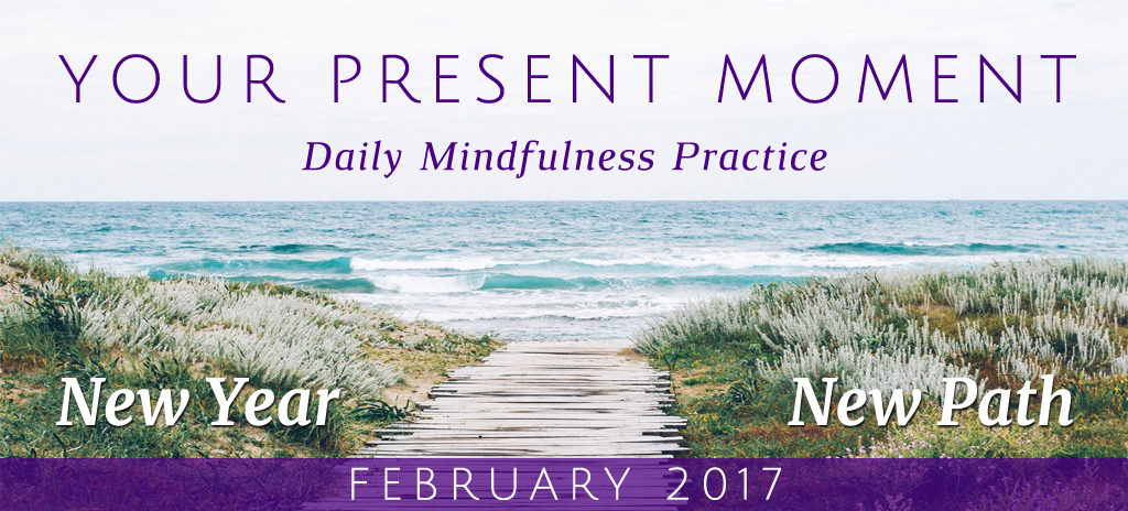 Your Present Moment Mindfulness eCourse Feb 2017